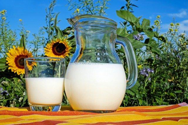 czy picie mleka jest zdrowe